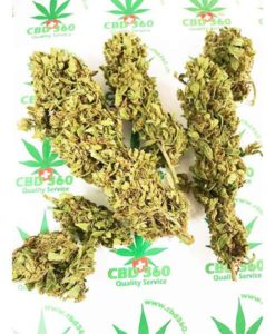Flor de cannabis legal