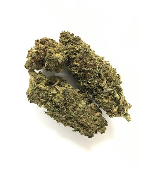 420green Legal cannabis Haze
