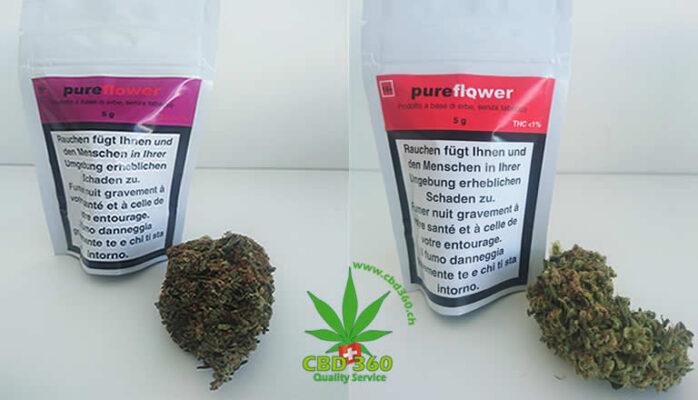 purexis pureflower
