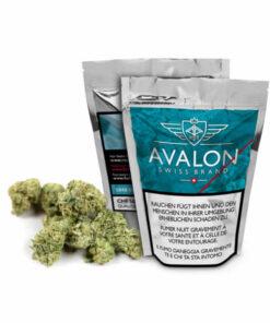 Avalon numero 8