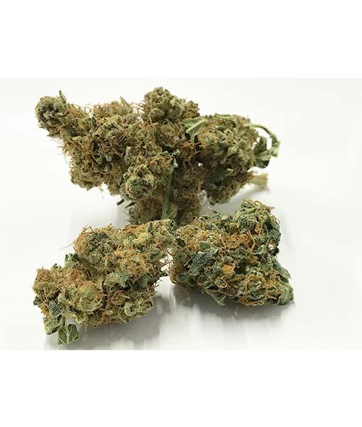 Cannabis flower CBD Mango Haze