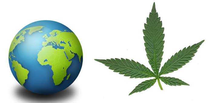 Cannabis no mundo