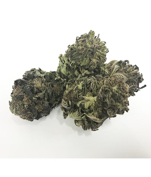 420Green Gorilla Glue Cannabis Light Ticino