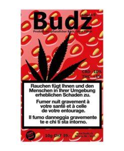 Budz Erdbeerli Kush outdoor